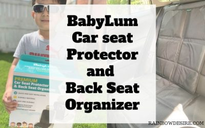 Car seat Protector and back seat organizer by BabyLum